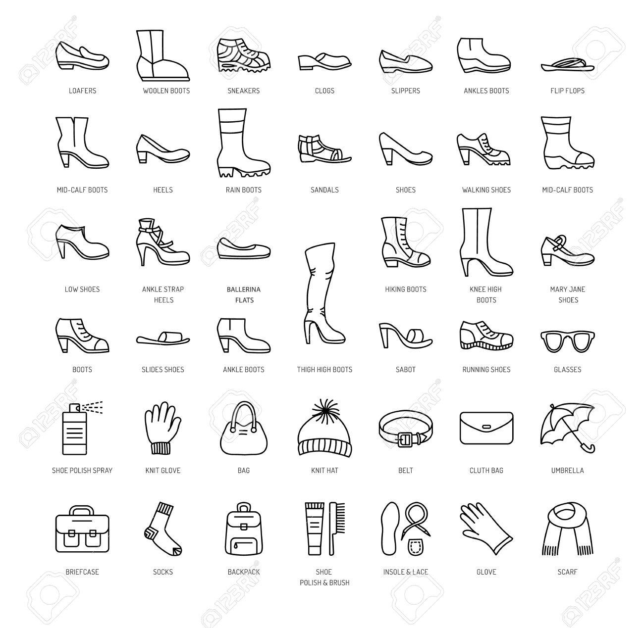 ae52b4b8cb Vector - Women s shoes   accessories. Vector line icon set. Various styles  of footwear. Heels