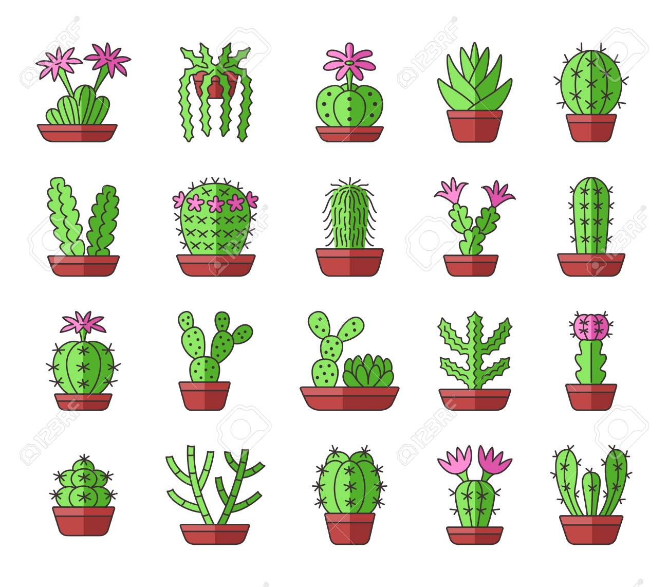 Cactuses Of Different Types Set Of Desert Plants For Terrariums
