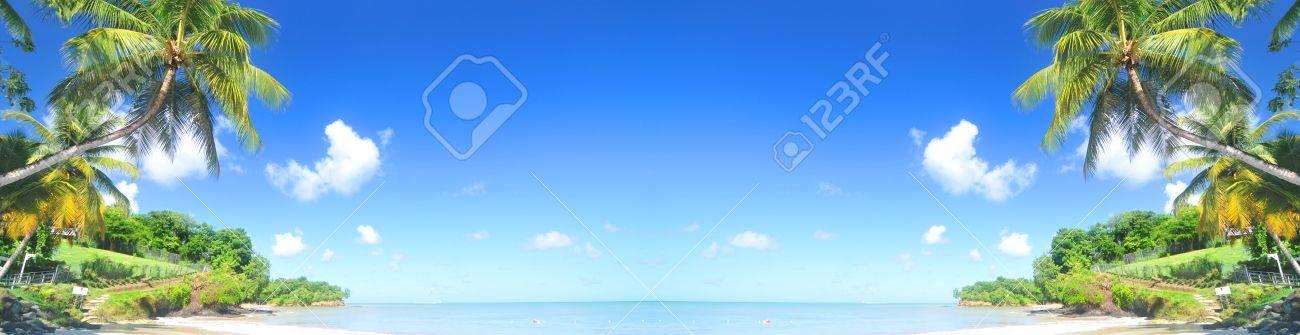 Tropical island horizontal banner - 43662376