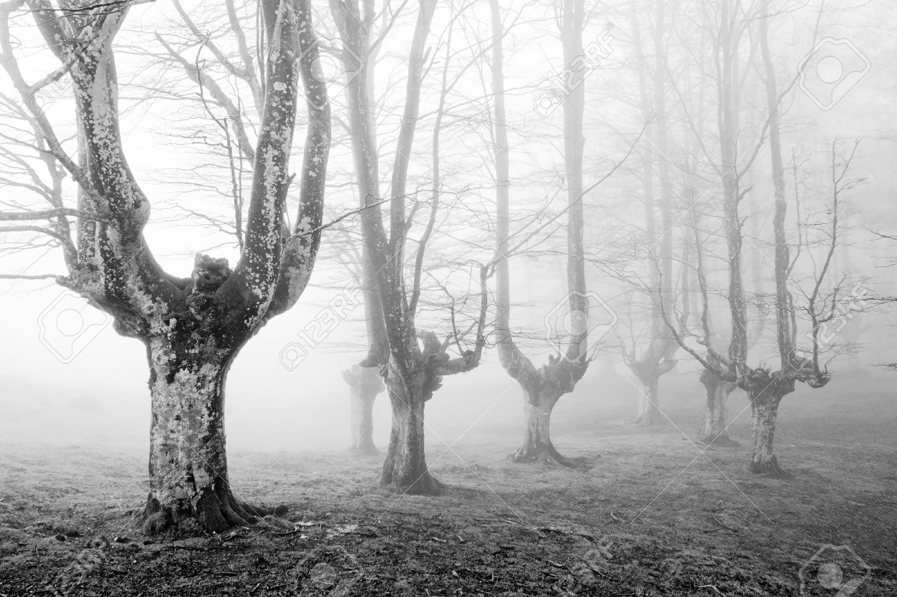 Scary Black And White Photos