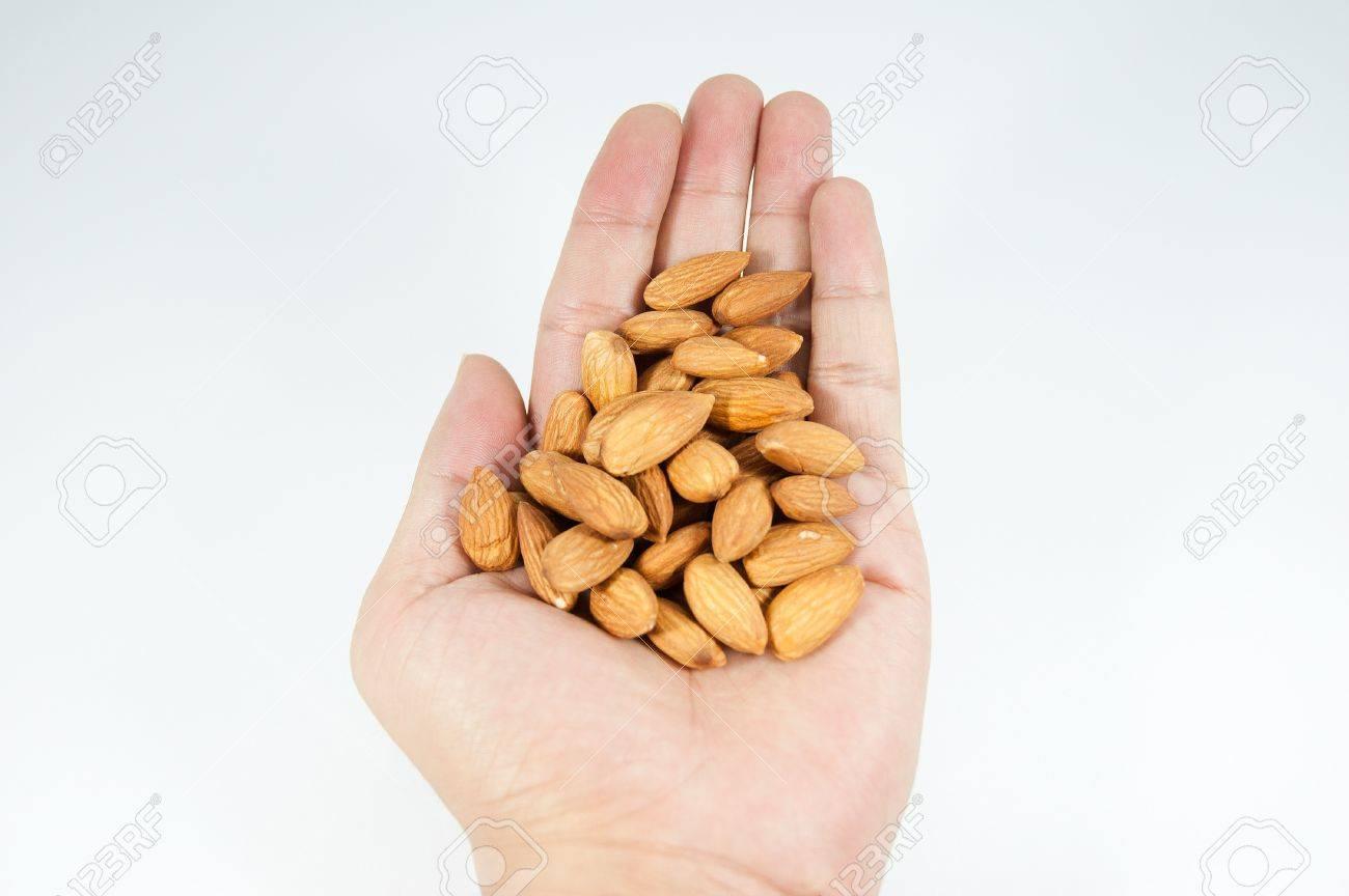 almond on man s hand - 15490601