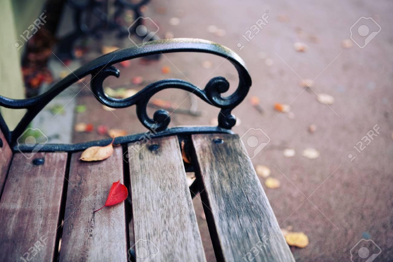 autumn - 15906726