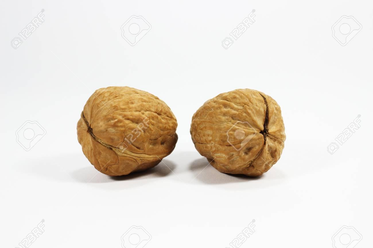 wallnut - 16003660