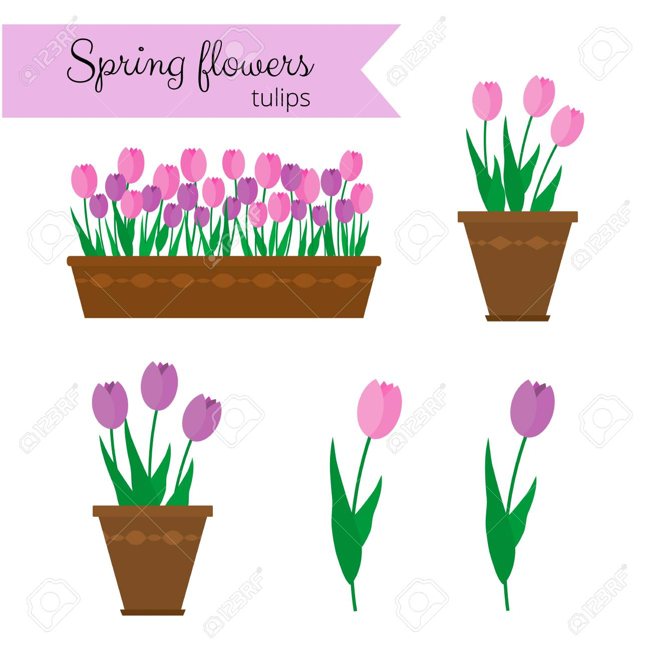 Spring flowers in long container and pots tulips isolated on spring flowers in long container and pots tulips isolated on white background stock vector mightylinksfo