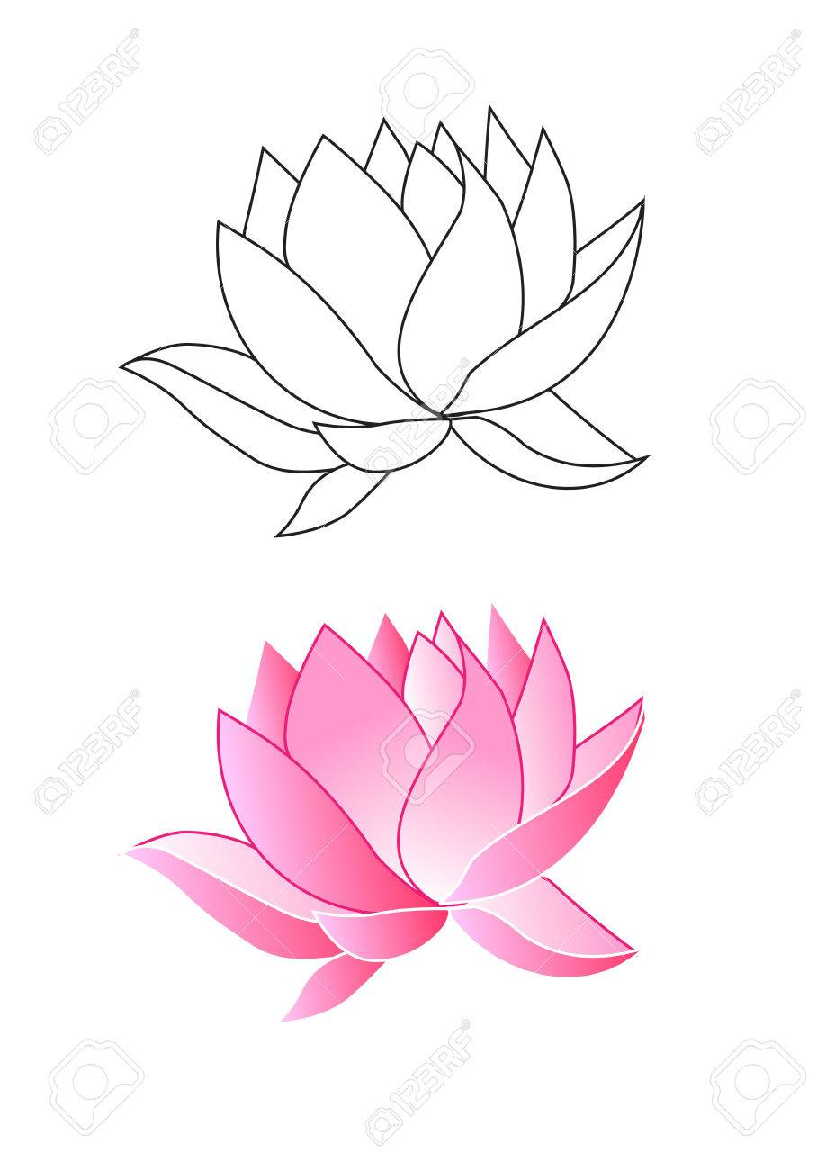Pink lotus flowers coloring vector illustration royalty free pink lotus flowers coloring vector illustration stock vector 60146330 mightylinksfo