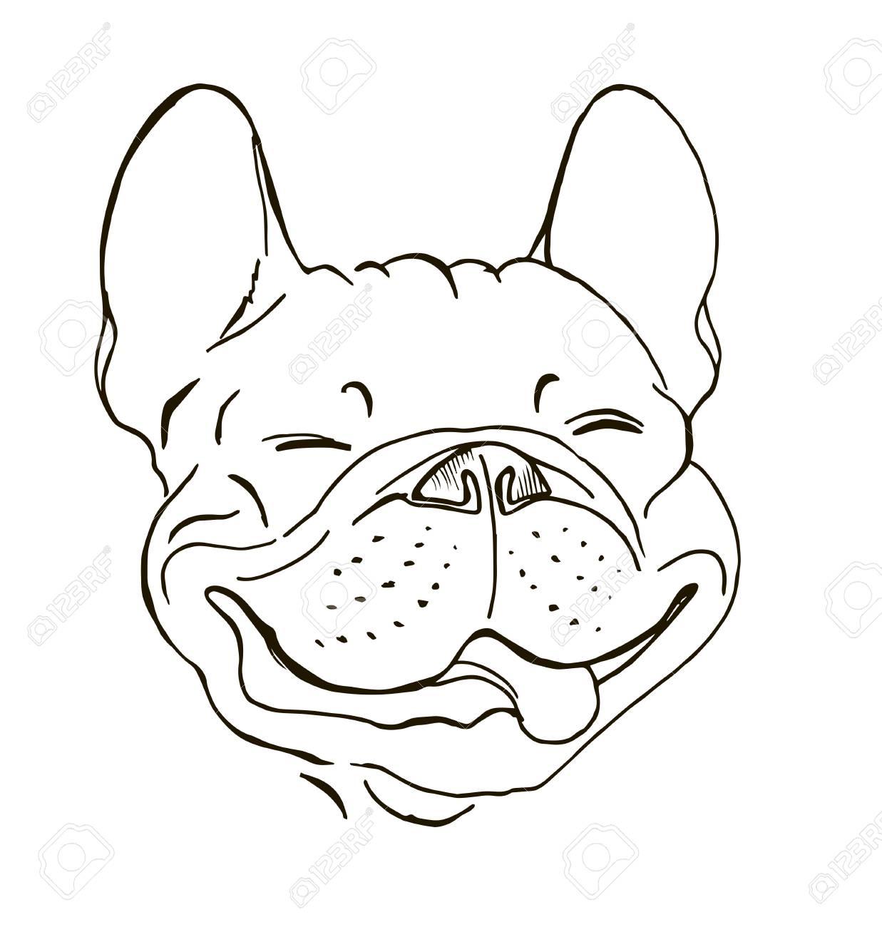 Bulldog Francés Retrato Cara De Perro Feliz Dibujo Ilustración Vectorial Gráfico Blanco Y Negro