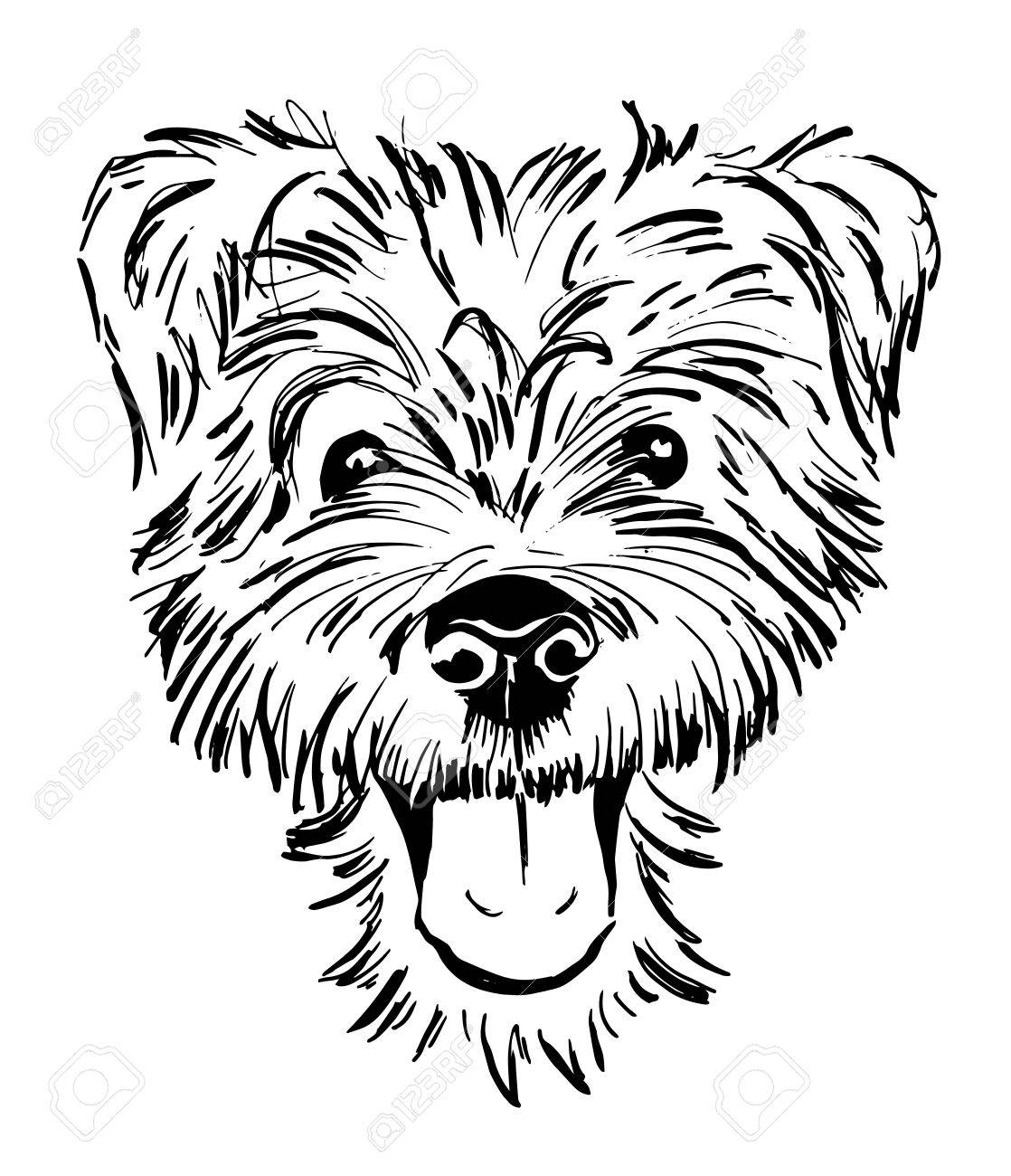 Dog breed terrier smiling dog face portrait sketch black and white vector