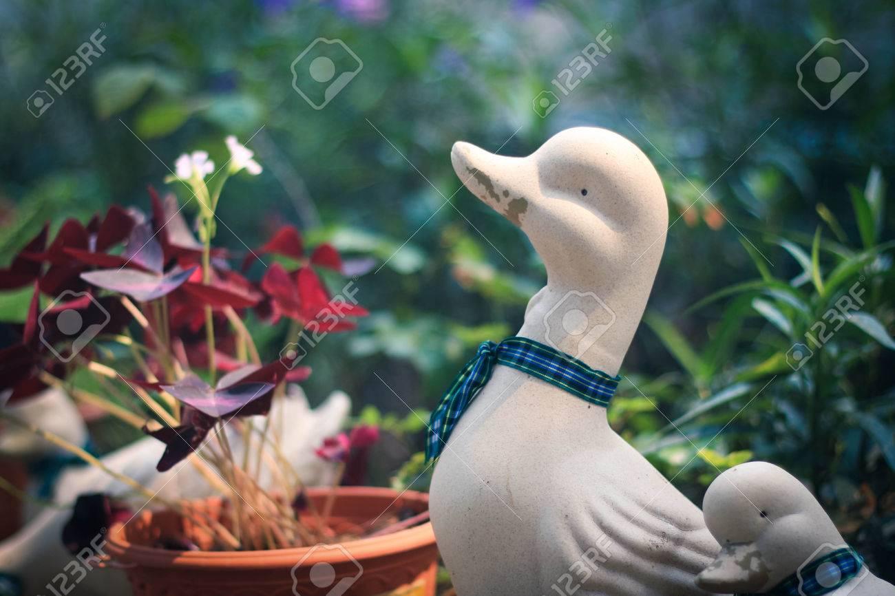 Duck Statues In Garden Stock Photo   38284238