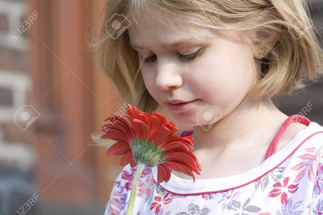 girl holding a red gerber Stock Photo - 12713247