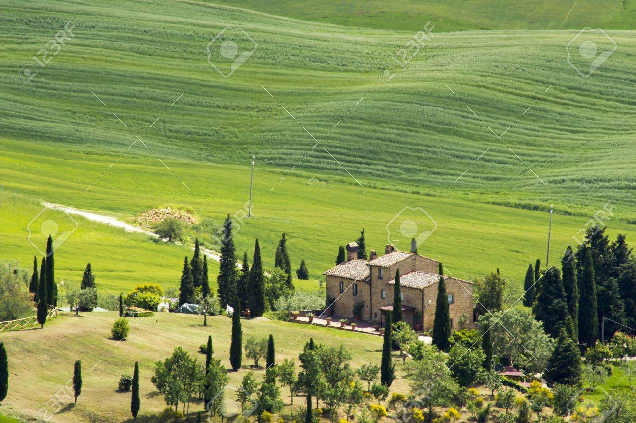 Tuscany - green typical landscape in spring time Stock Photo - 20681230