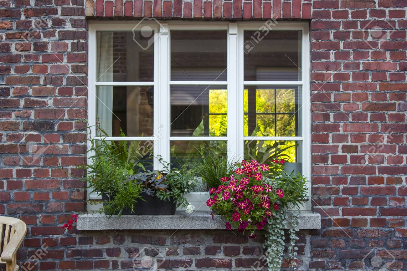 Brick Wall With Windows And Flower Boxes With Flowering Plants