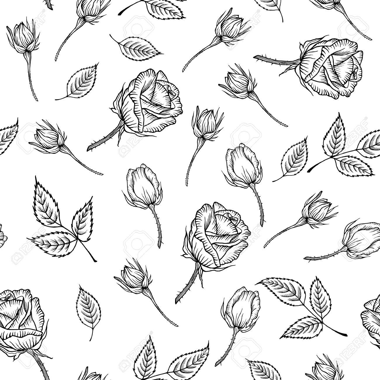 Sin Patrón Con Blanco Y Negro Color De Rosa Aislada Patrón De