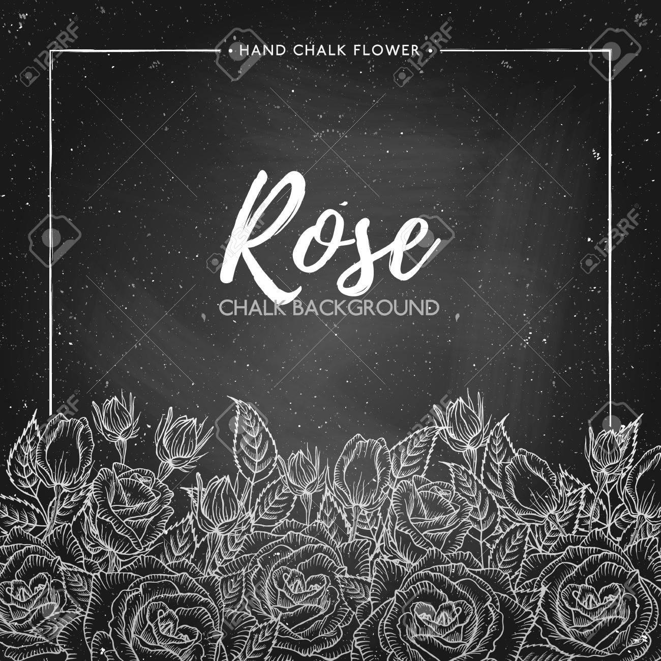 Rosa De Fondo Floral En La Pizarra, La Tiza Marco De La Flor, Floral ...