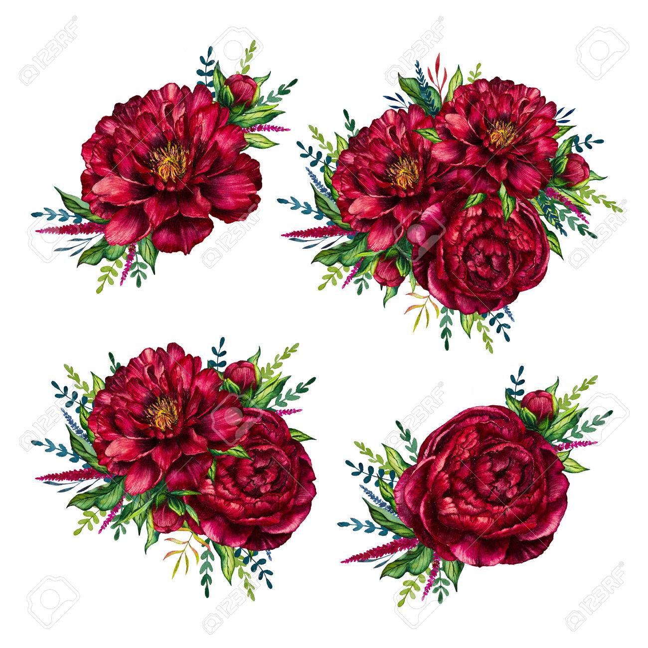 Set Of Watercolor Red Peonies Bouquets, Flower Peony, Watercolor ...