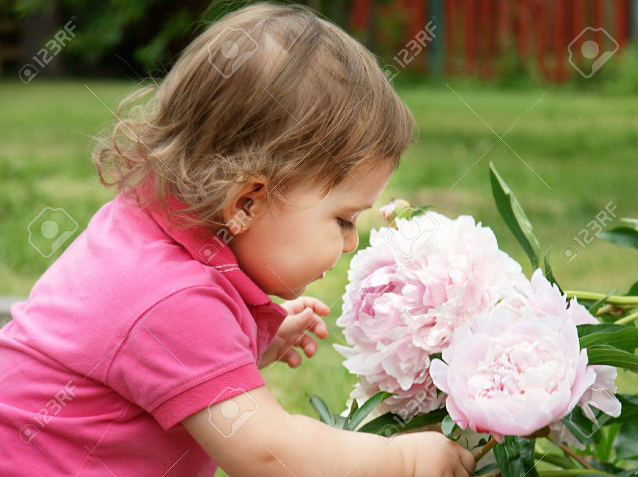 sweet baby girl smelling pale pink peonies flowers in the garden