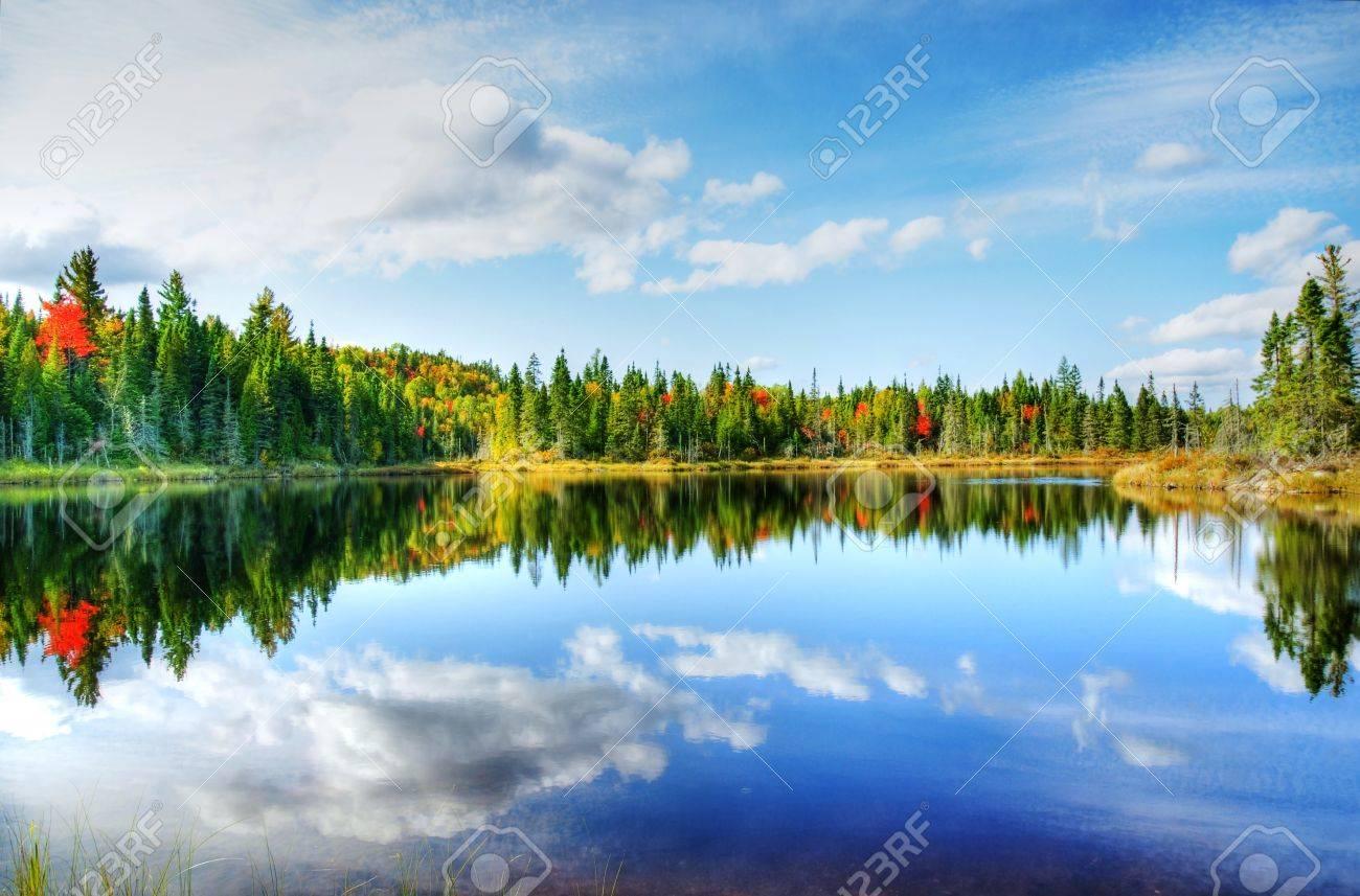Schonen Sonnigen Tag Im Herbst In Nord Kanada Wald Mit Einigen Roten