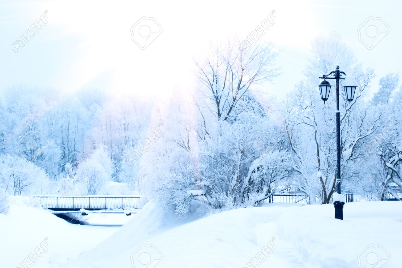 stock photo winter background landscape winter trees in wonderland winter scene christmas new year background