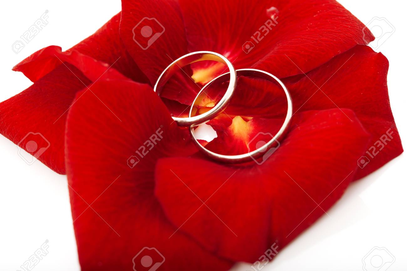 Wedding Concept For Invitation Card Wedding Rings In Petals Stock