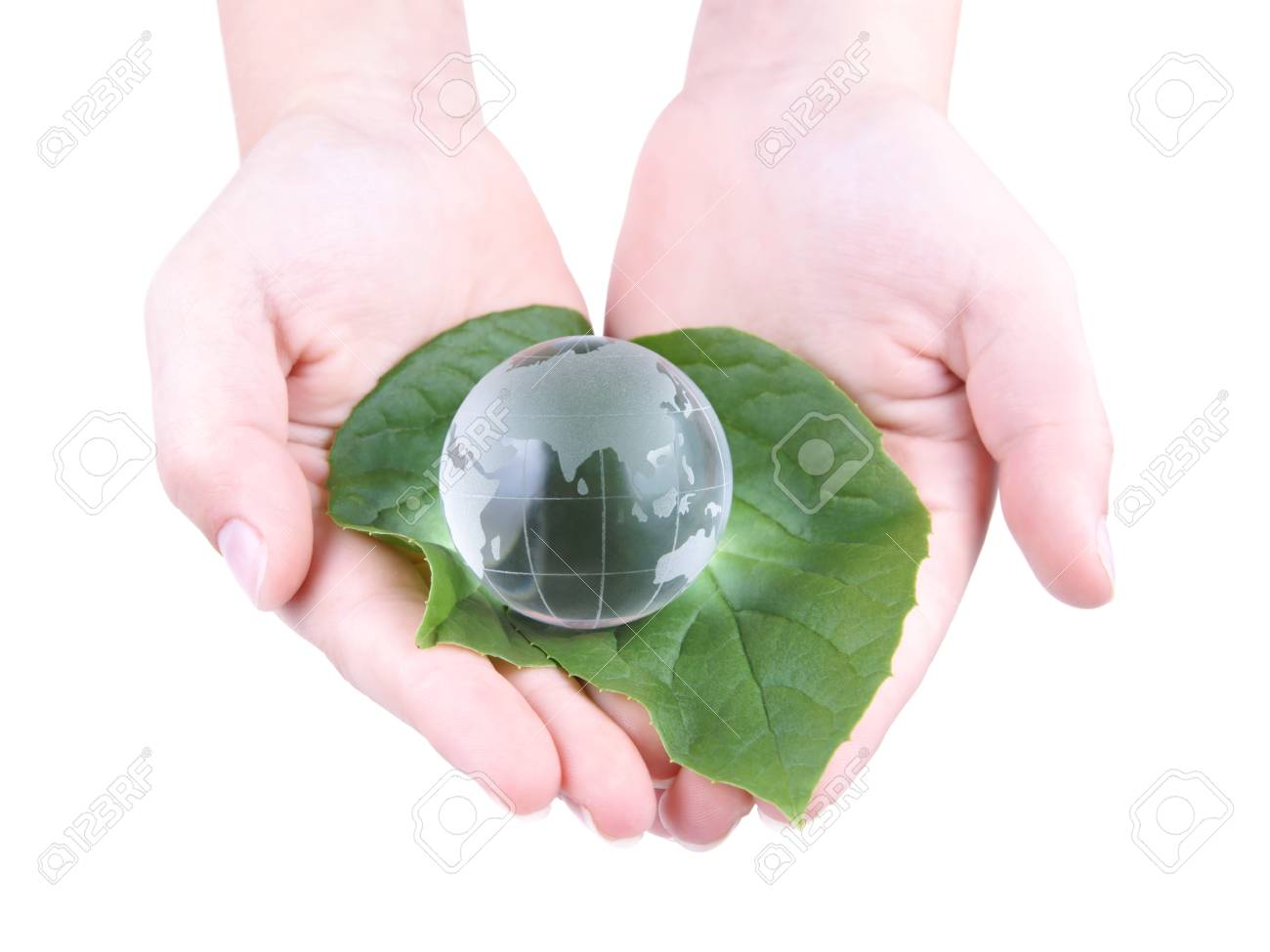 Glass Globe in the leaves and the child s hands, isolated on white background Stock Photo - 23365163
