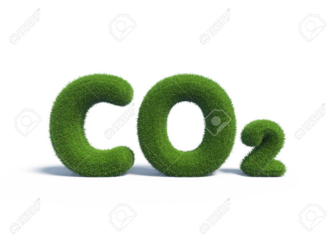 co2 green grass in the form of letters - 23822741