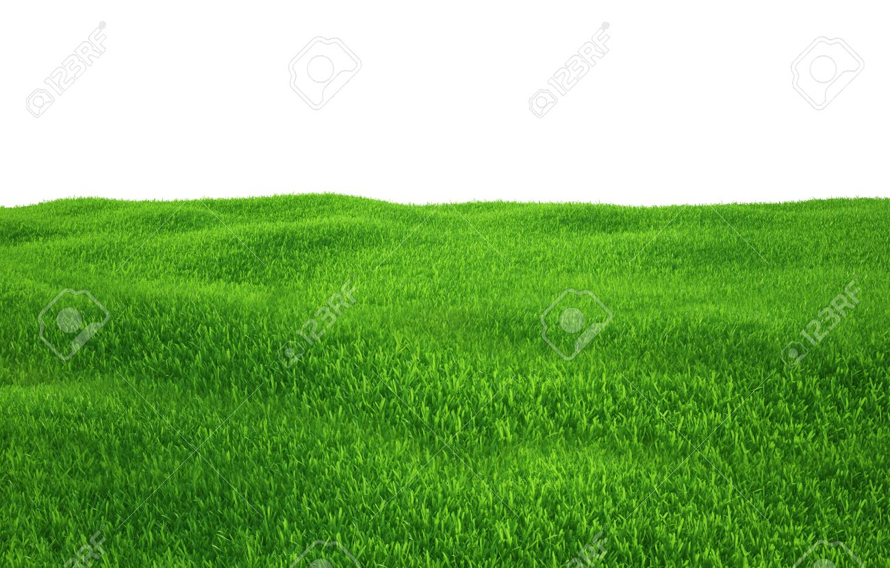 Green grass growing on hills with white background top view. 3d render - 39681862