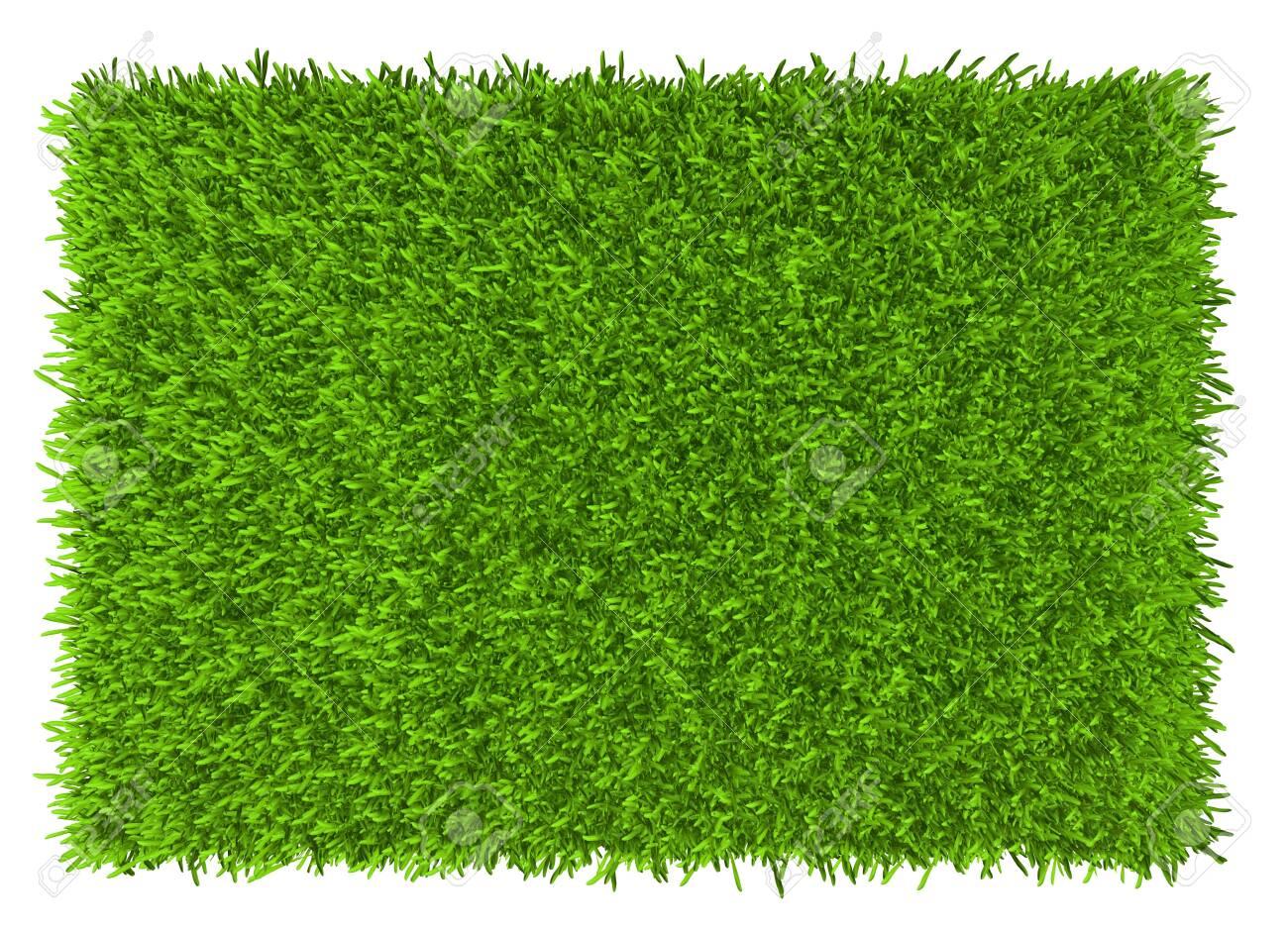 Grass background texture. fresh grass. 3d rendering - 125293912