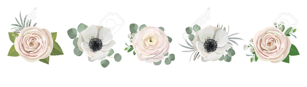 anemone ranunculus eucalyptus rose peony flowers and eucalyptus branches bouquet vector illustration, hand drawn floral elements set for greeting cards, wedding invitations. - 124157481