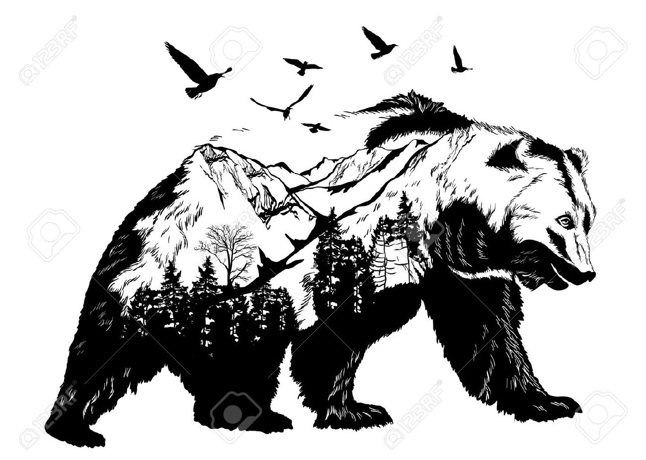 8,241 Grizzly Bear Cliparts, Stock Vector And Royalty Free Grizzly ...