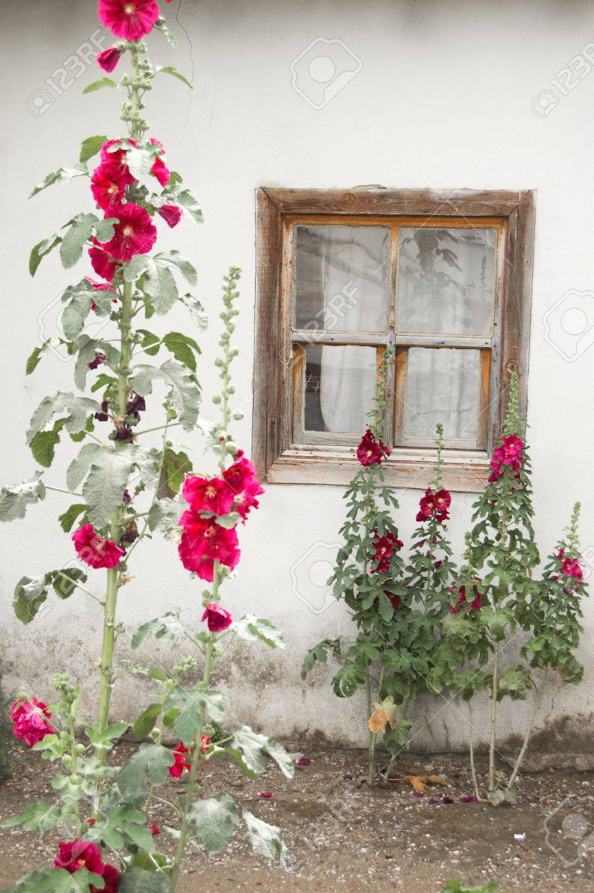 Window in the small house wall, outside view Stock Photo - 5079170