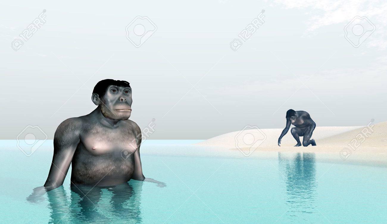 Homo Habilis - Human Evolution Stock Photo - 16696802