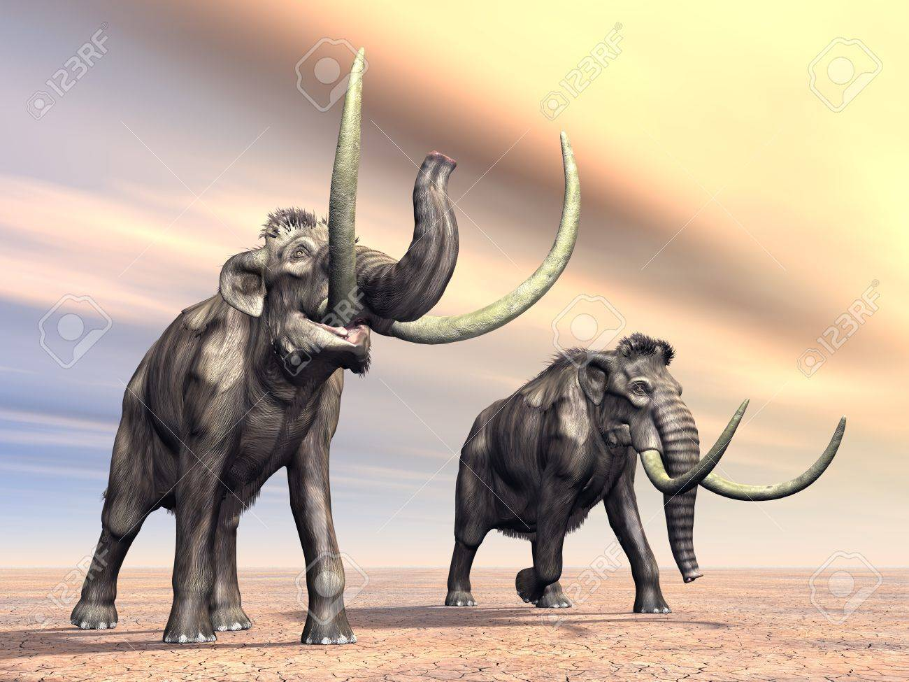 Mammoths Stock Photo - 16696812