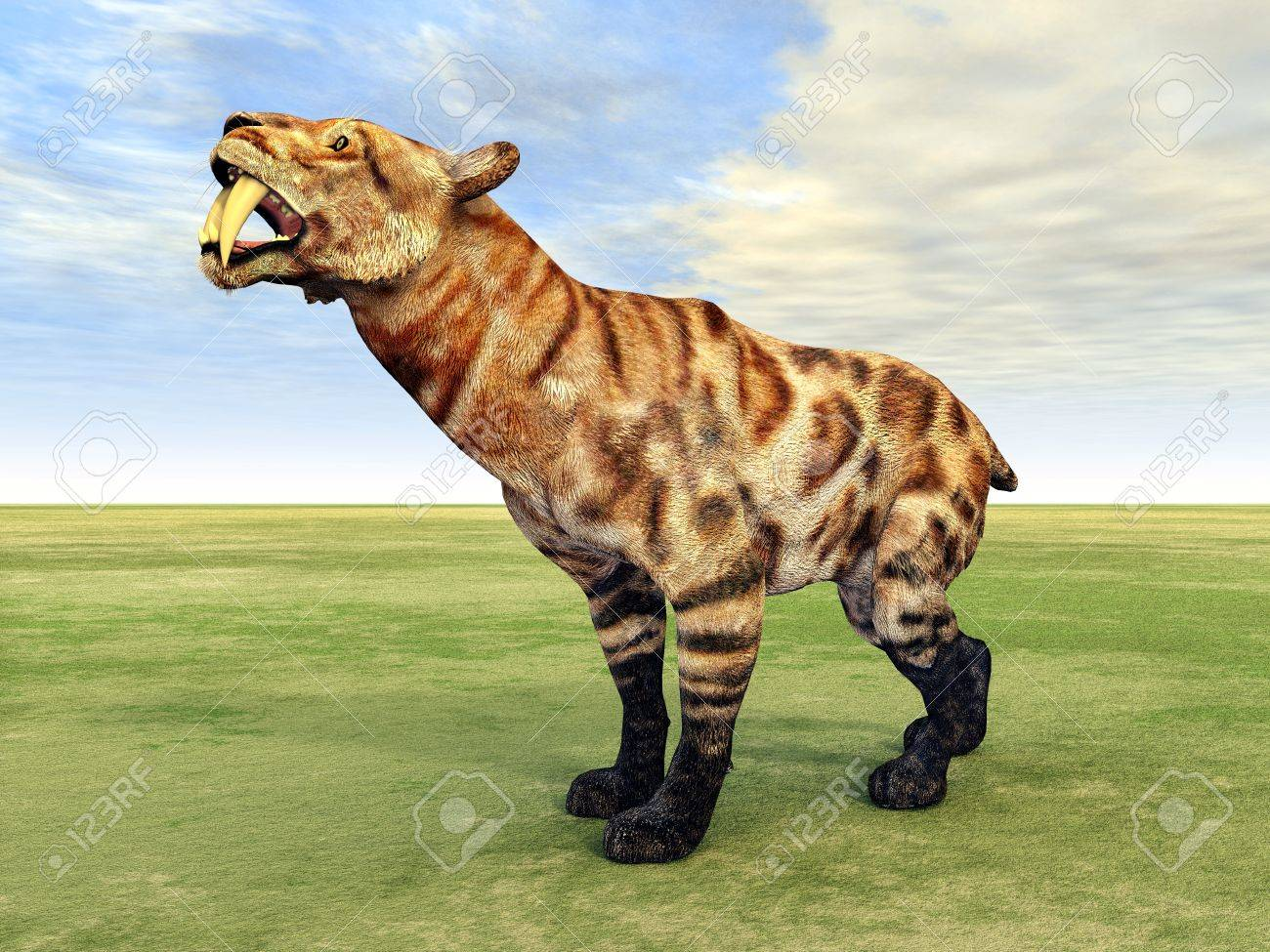 Saber-Toothed Cat Smilodon Stock Photo - 20307625