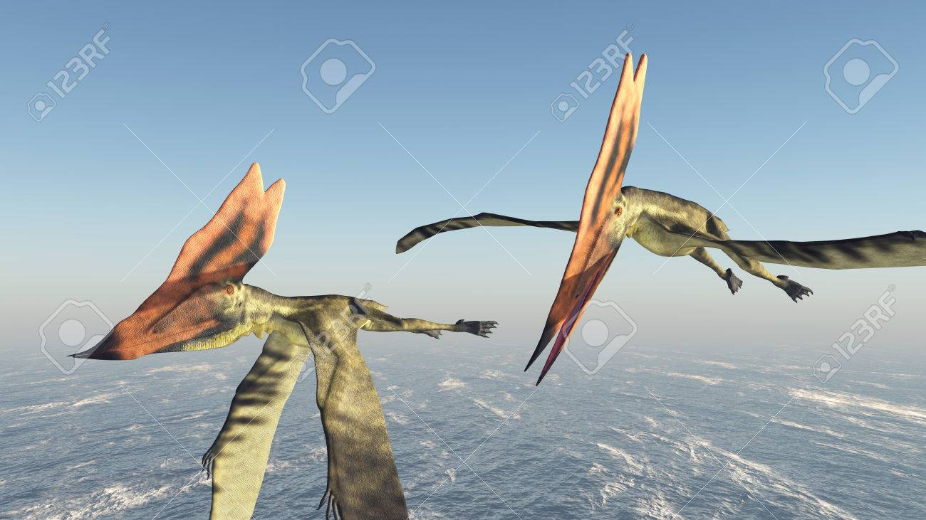 海の上の翼竜タラソドロメウス の写真素材・画像素材 Image 65352344.