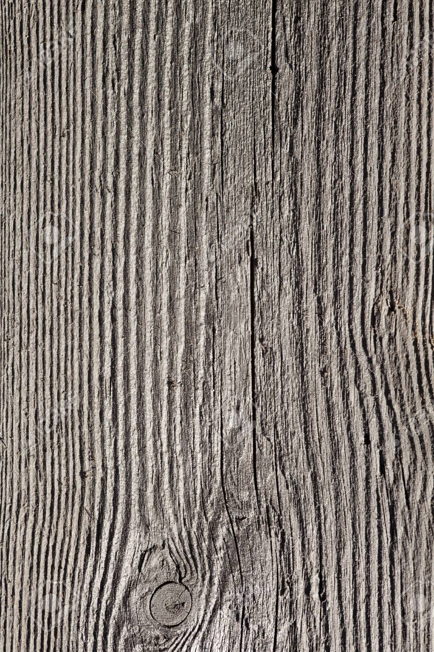 wood grain texture birch stock photo wood grain texture or wooden board background plank wood grain texture or wooden board background plank