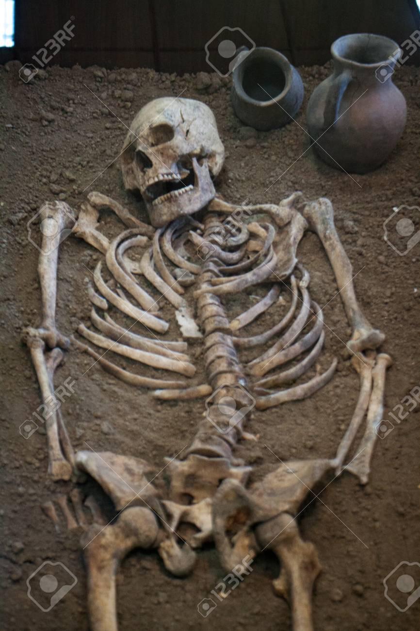 Excavaciones Arqueolgicas De Un Hombre Humano Homo Sapiens Antiguo