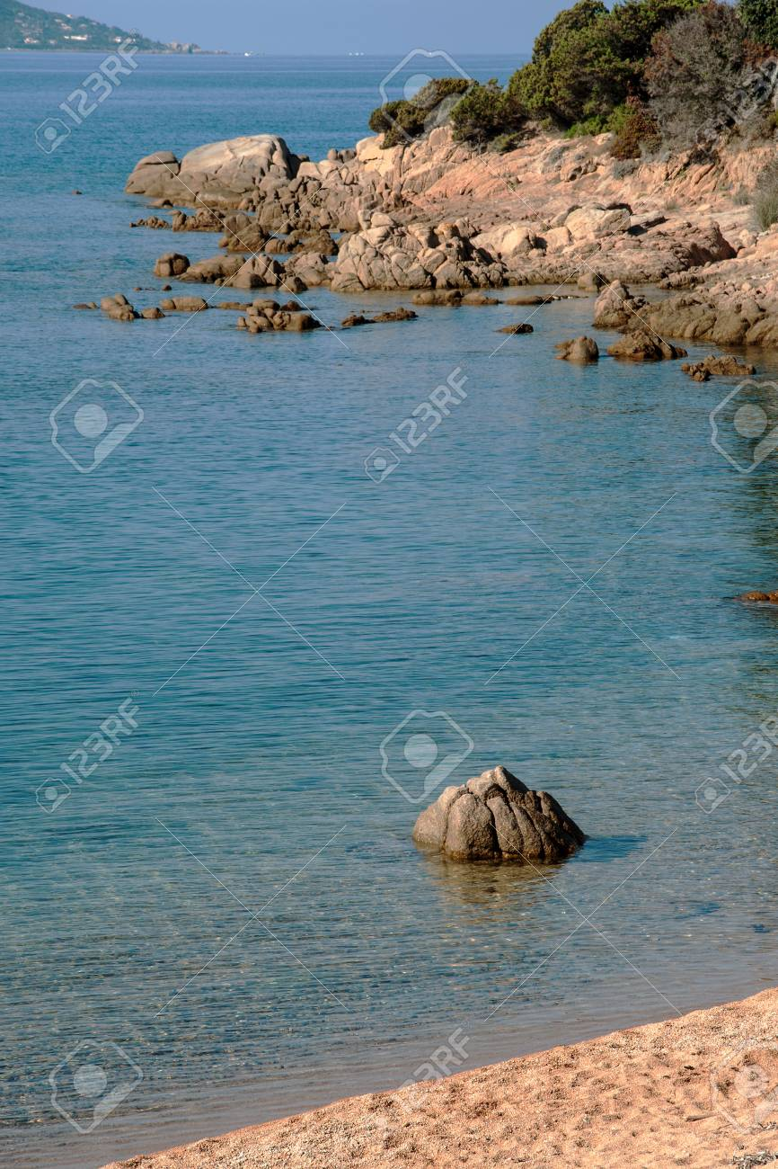 Stone like a lotus flower on the beach of the french island of stone like a lotus flower on the beach of the french island of corsica stock photo izmirmasajfo Images