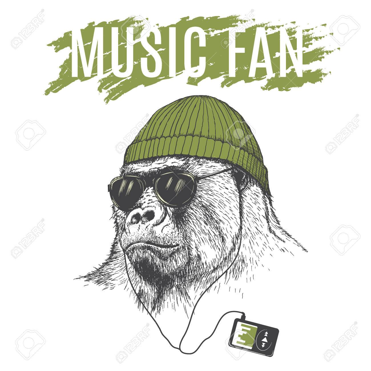 Monkey listening to music in headphones .Dressed in hat.Vector illustration - 65648630