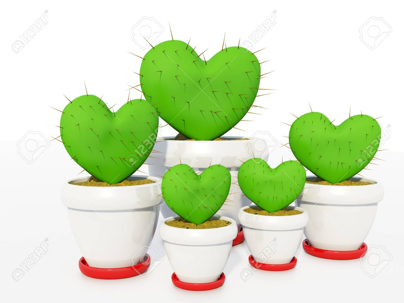 Green cactus as heart isolated on white Stock Photo - 4100162