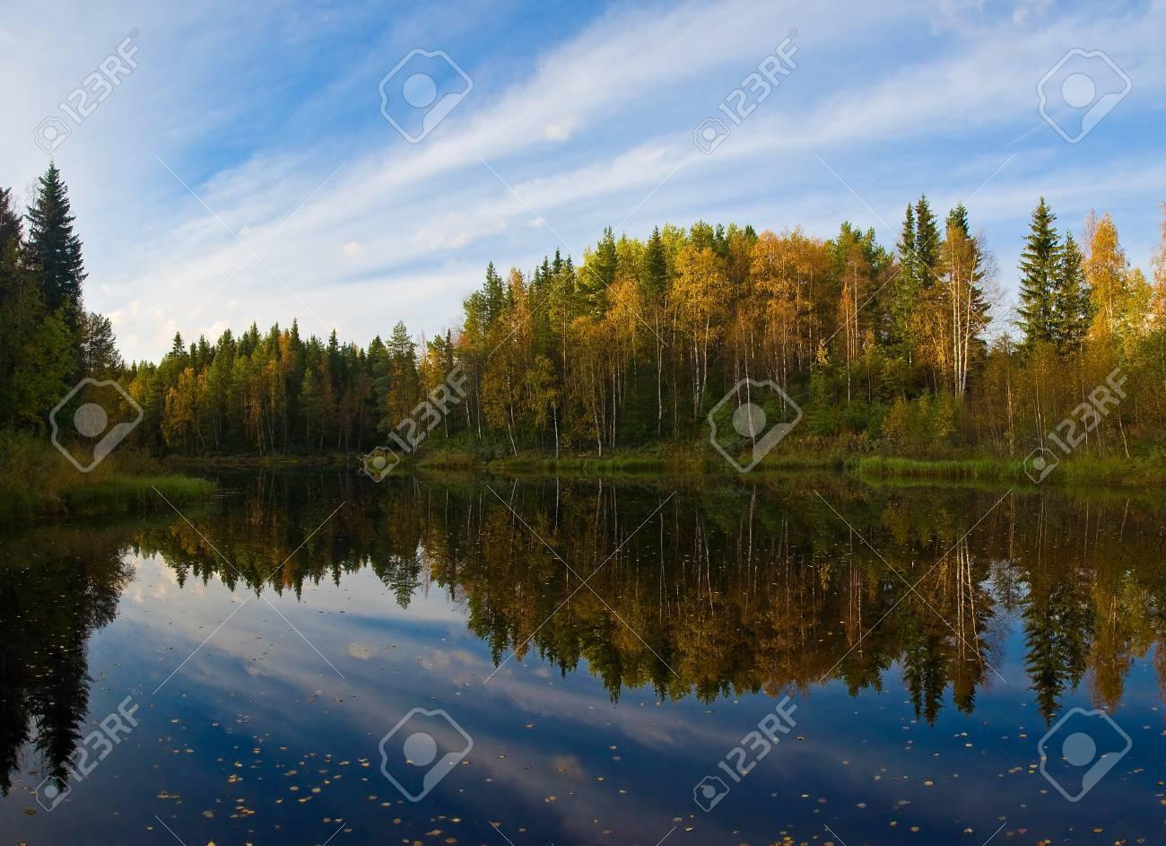 Beautiful autumn forest at the rivers coast Karelia - 15362712