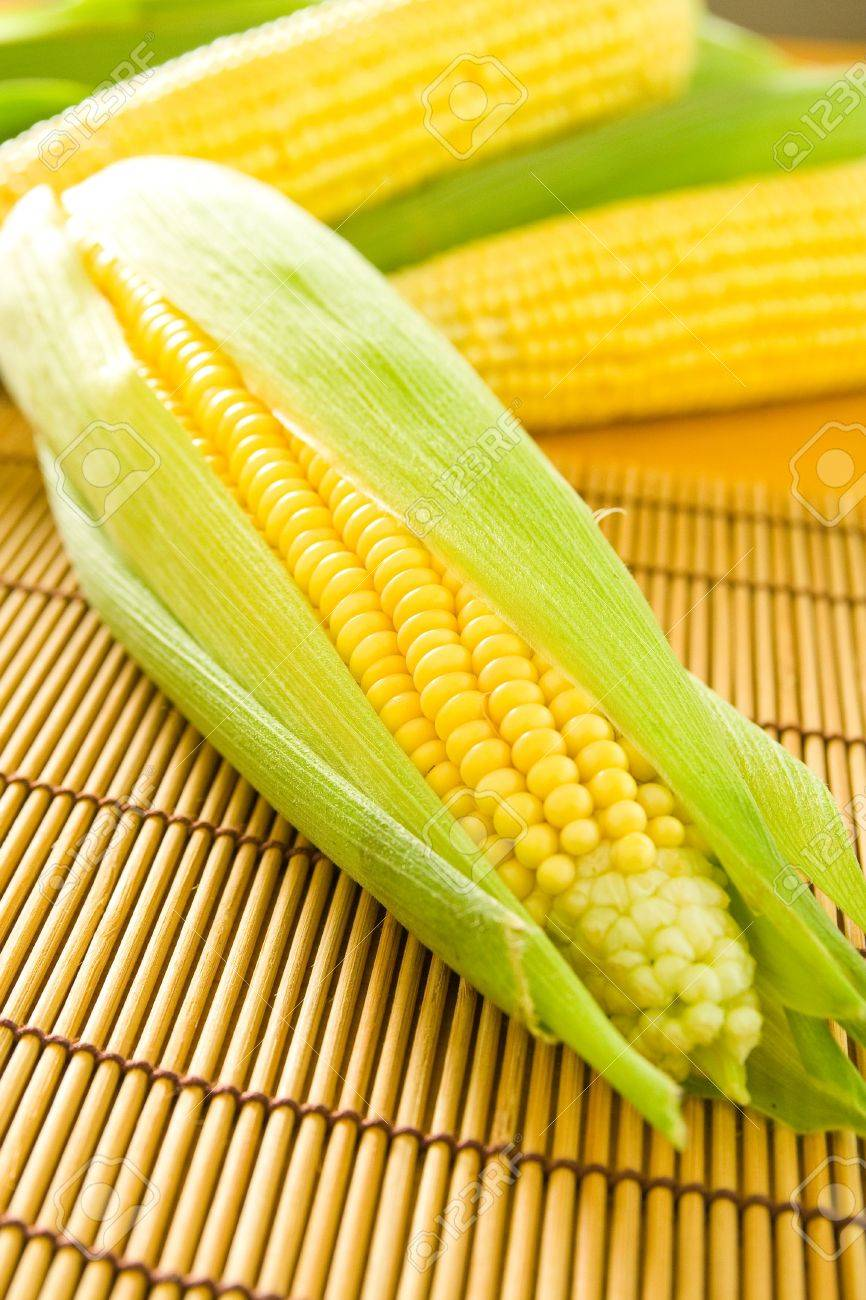 Freshly grown and tasty corn on the cob. Stock Photo - 7685270