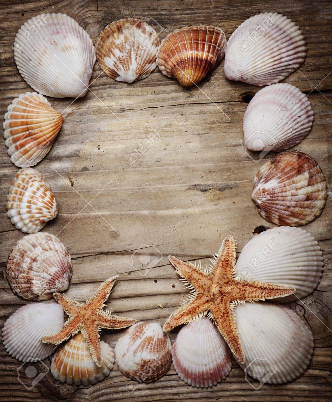 Seashell frame on wooden background - 18465932