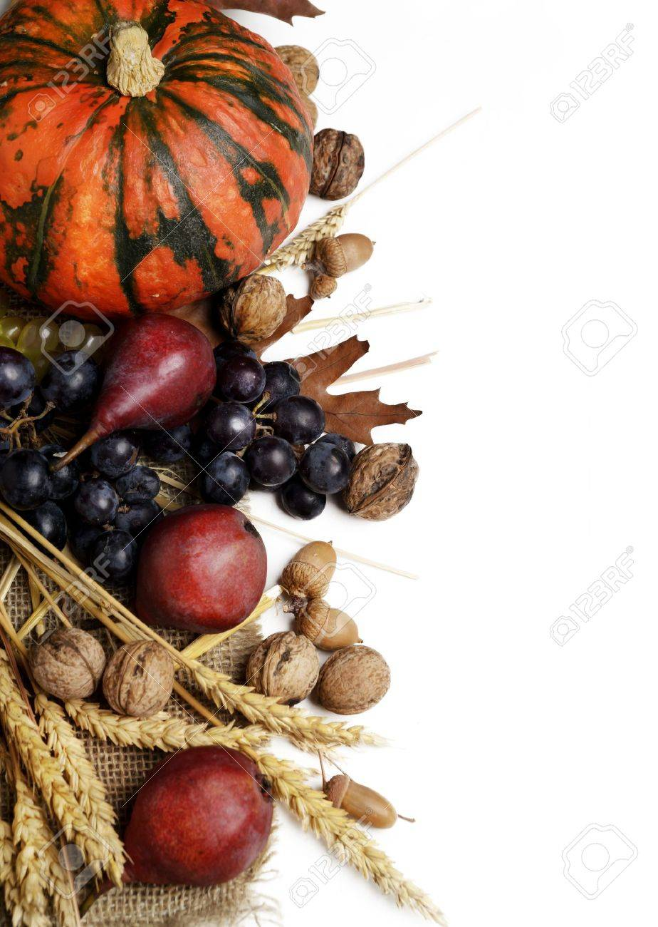 Autumn concept with seasonal fruits and vagetables - 21724805