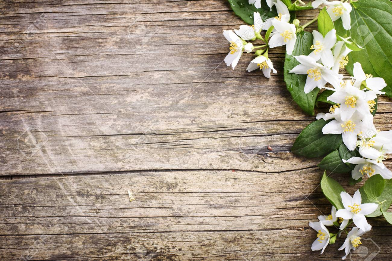 Beautiful Spring Flower Border On Rustic Wooden Background With