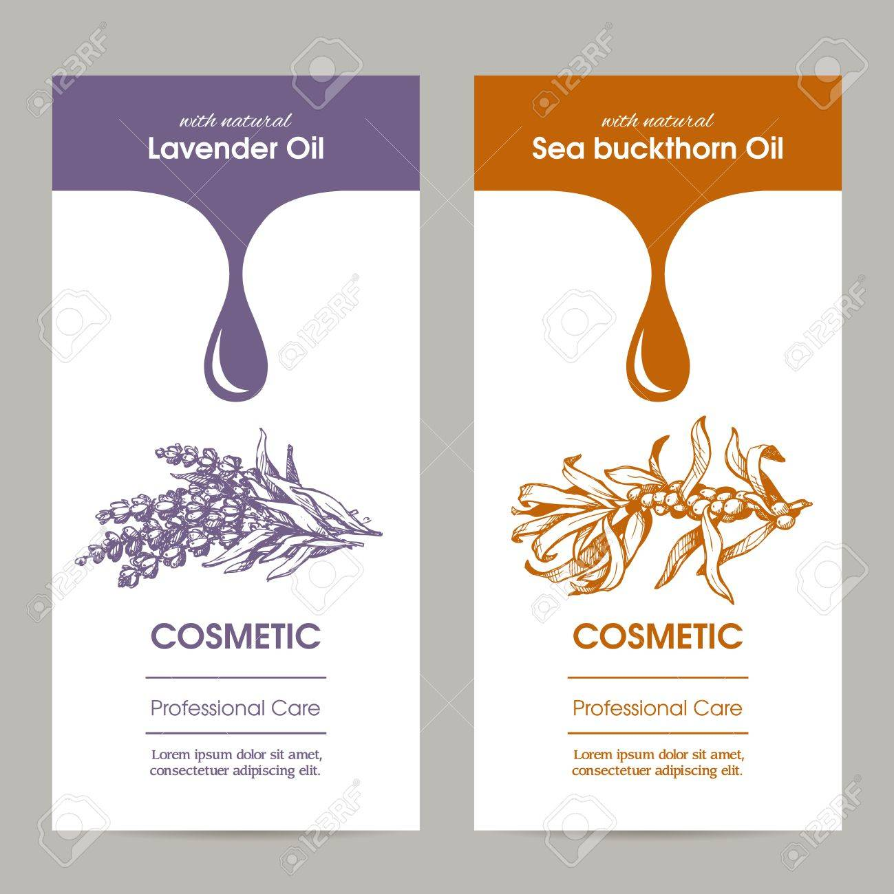 Vector Set Of Templates Packaging Cosmetic Label Banner Poster Royalty Free Cliparts Vectors And Stock Illustration Image 66066996