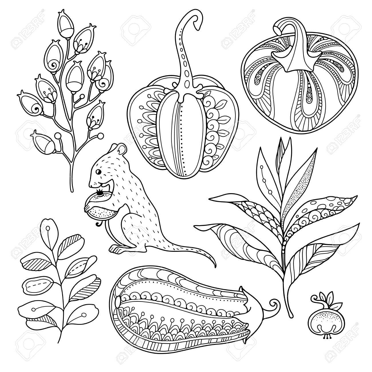 Objetos De Jardín Mágicos En Estilo Doodle Elementos Florales Ornamentados Decorativos Tribales Del Diseño Del Vector Fondo Blanco Y Negro