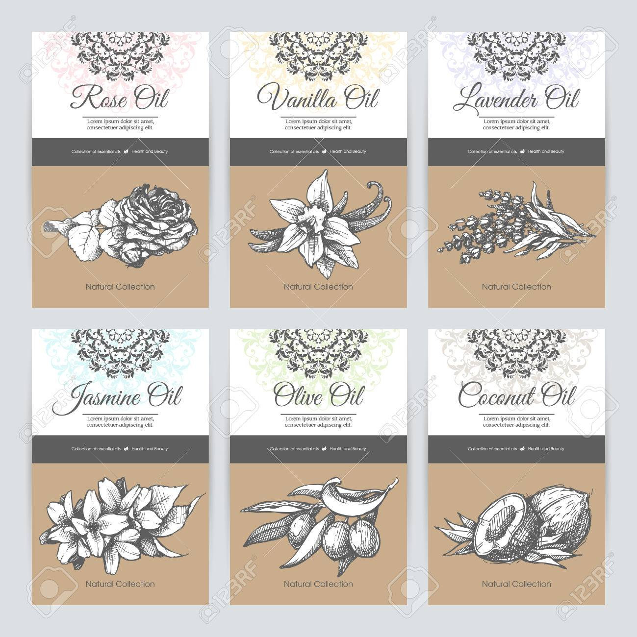 Set Of Templates Packaging Cosmetic, Label, Banner, Poster, Identity ...