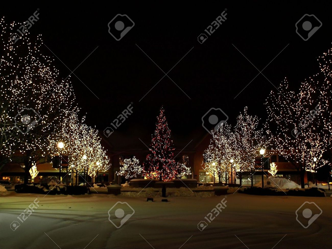Photo of light trees with christmas lights in the park around a large christmas tree, photo taken at night Stock Photo - 4175864