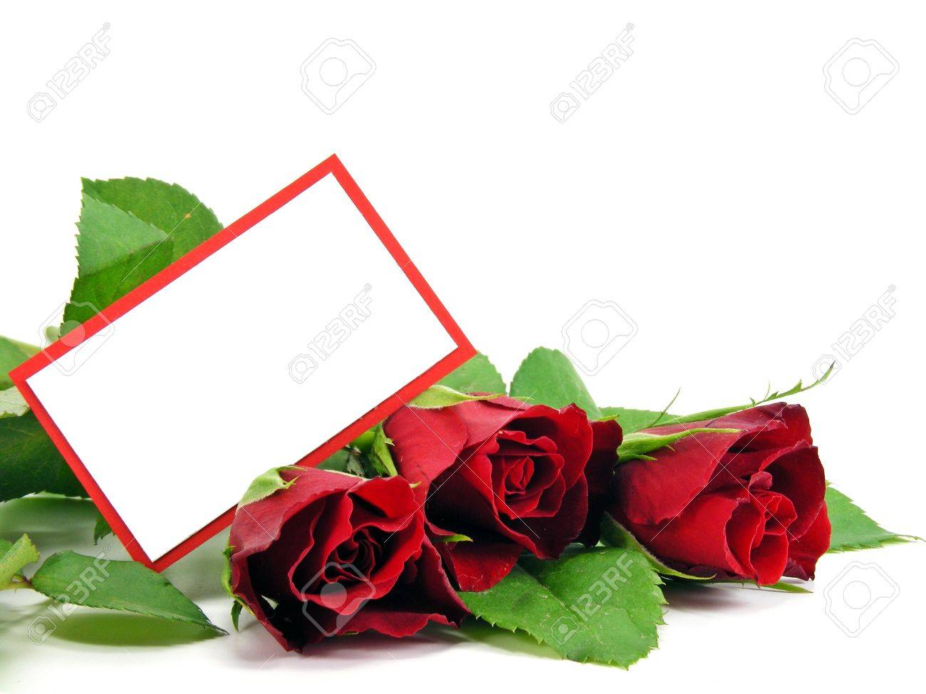 A Selection Of Red Roses And A Blank Gift Card With Copy Space Stock ...