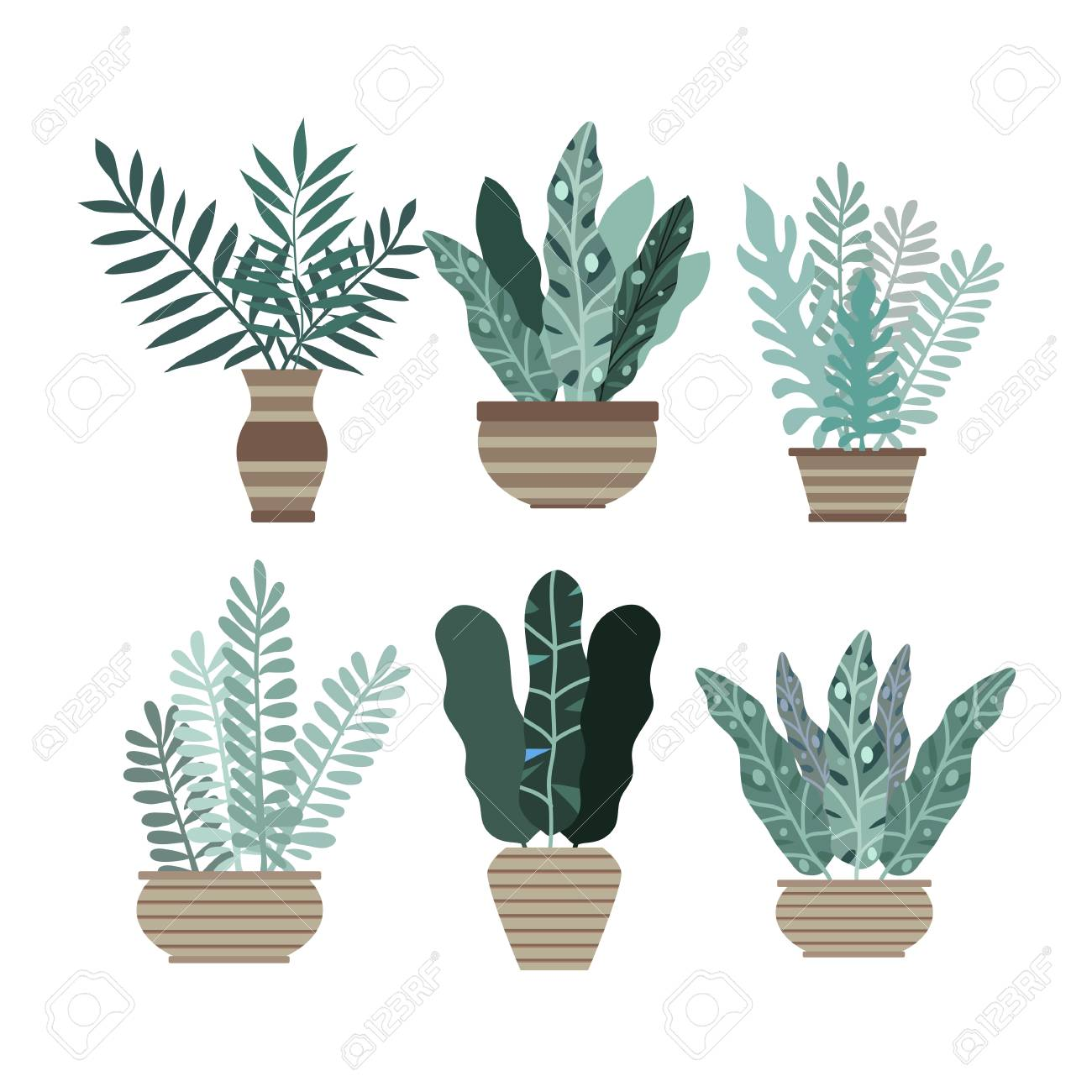 Tropical office plants Home Mr Price Home Room And Office Plants In Pots Cactus And Tropical Leaves Cute Vector Elements Tropical Plant Rentals Home Room And Office Plants In Pots Cactus And Tropical Leaves