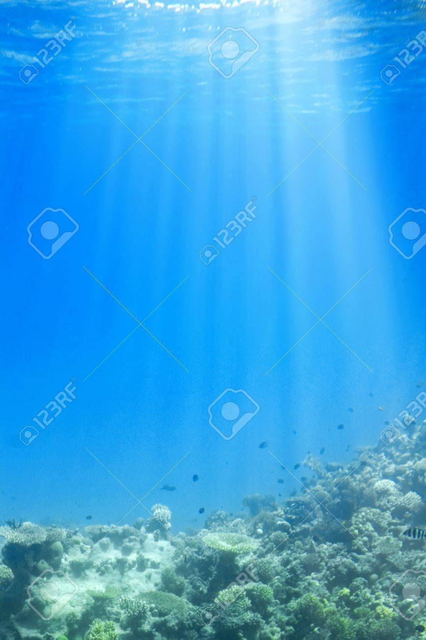 underwater scene with sun rays through water stock photo picture